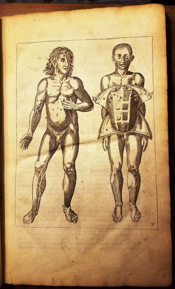THE ANATOMY OF THE BODY OF MAN: WHEREIN IS EXACTLY DESCRIBED EVERY PART THEREOF, IN THE SAME MANNER AS IT IS COMMONLY SHEWED IN PUBLICK ANATOMIES. Johann VESLING.