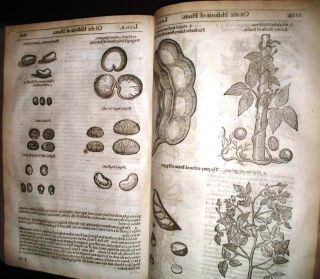 HERBAL] THE HERBALL OR GENERALL HISTORIE OF PLANTES. GATHERED BY JOHN GERARDE OF LONDON MASTER IN...